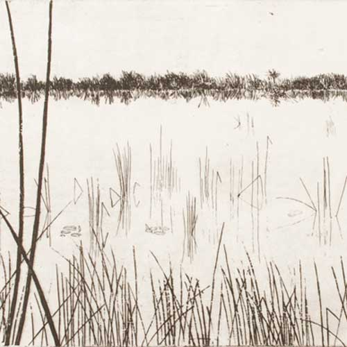 Okavango Delta, Etch/Aquatint