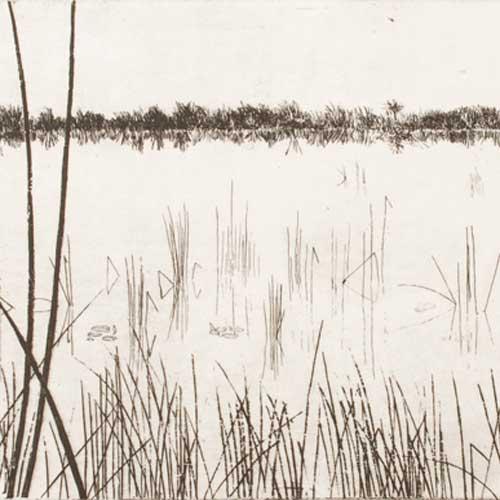 Okavango, Etching, By Lesley Prickett