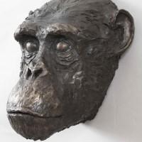Chimpanzee, Bronze Resin