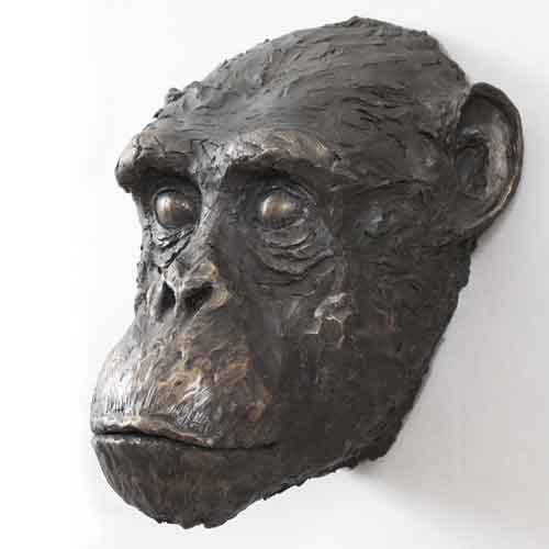 Chimpanzee, bronze resin
