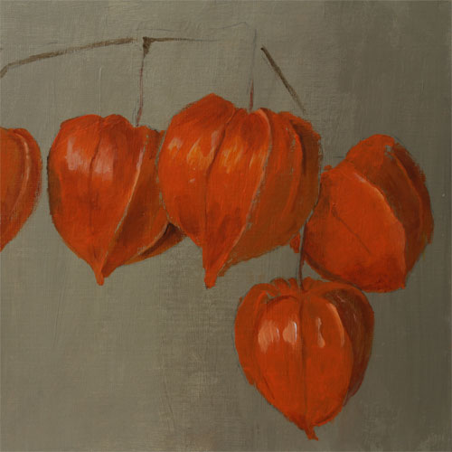 Physalis (or Chinese Lantern)