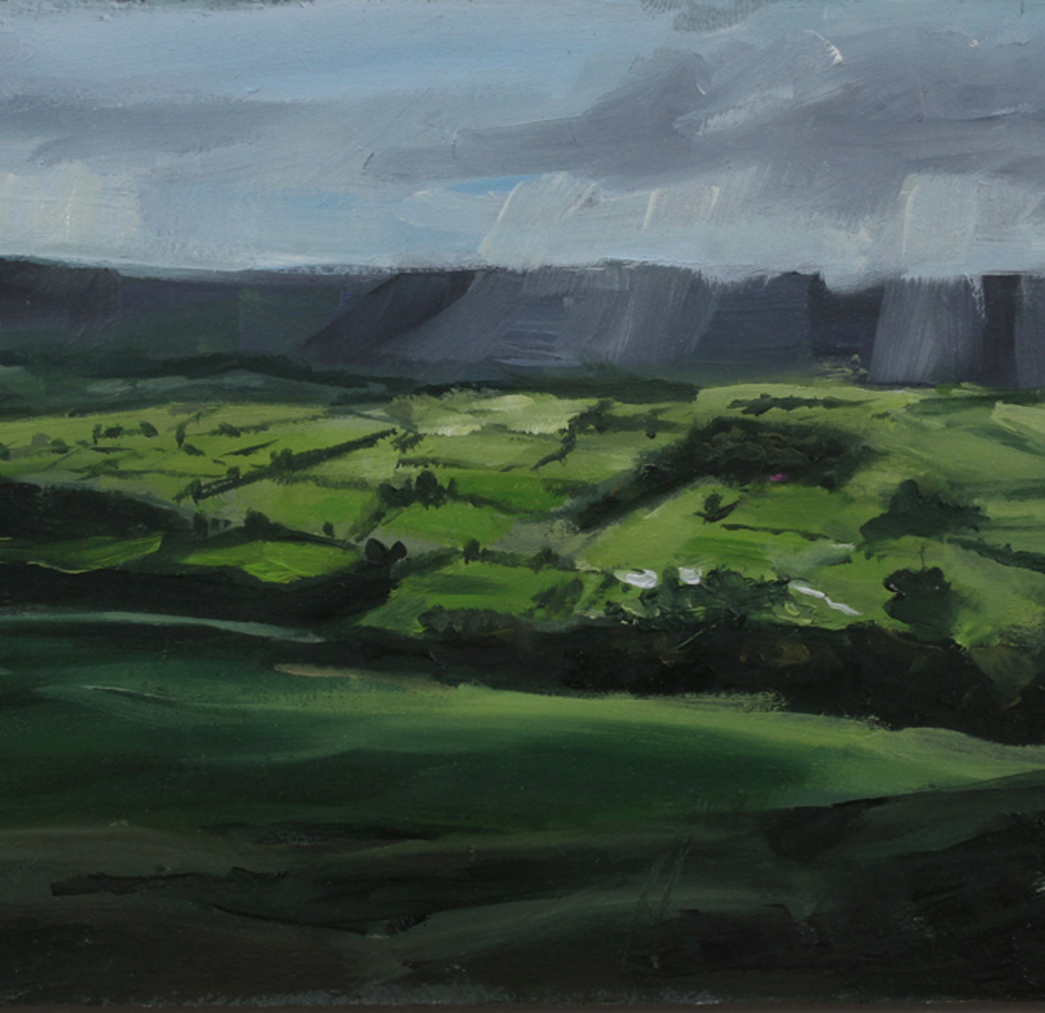 Edale Valley By Lesley Prickett. Oil On Board, Postcard Size.